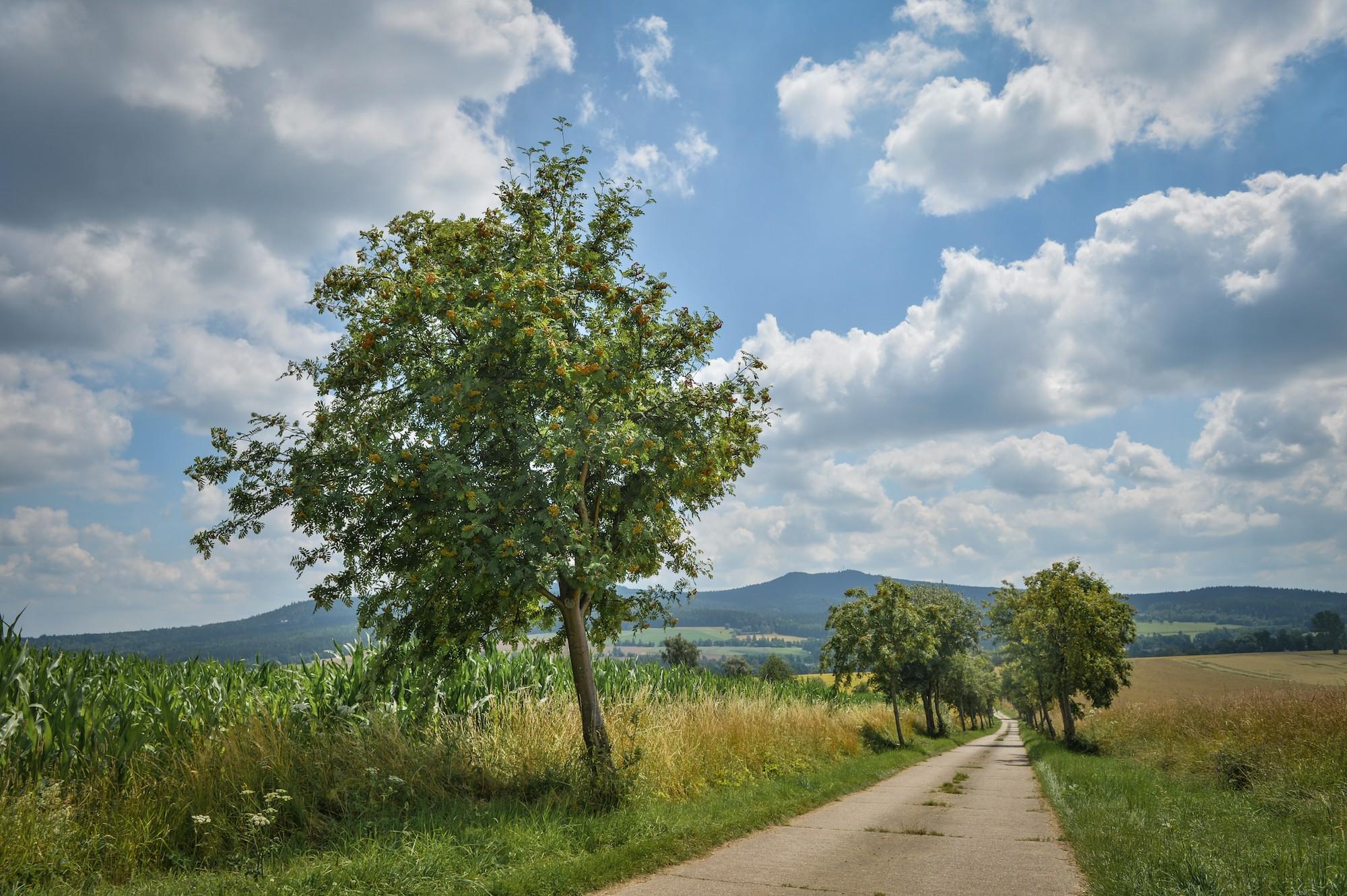 Wander- und Urlaubsregion Mittelgebirge